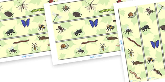 Minibeast Display Borders - Minibeasts, Display border, border, display, minibeast, knowledge and understanding of the world, investigation, living things, snail, bee, ladybird, butterfly, spider, caterpillar