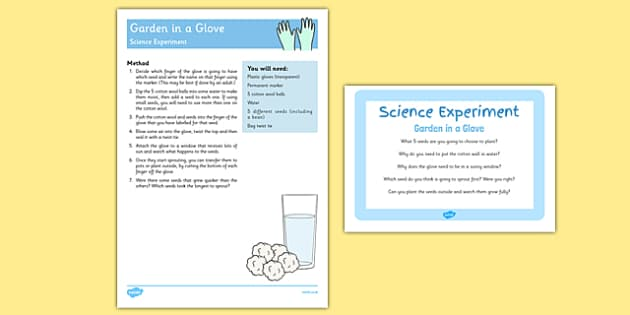 EYFS Glove Garden Science Experiment And Prompt Card Pack - EYFS, growing, seeds