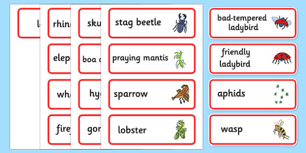 Word Cards to Support Teaching on The Bad Tempered Ladybird - keywords, story books