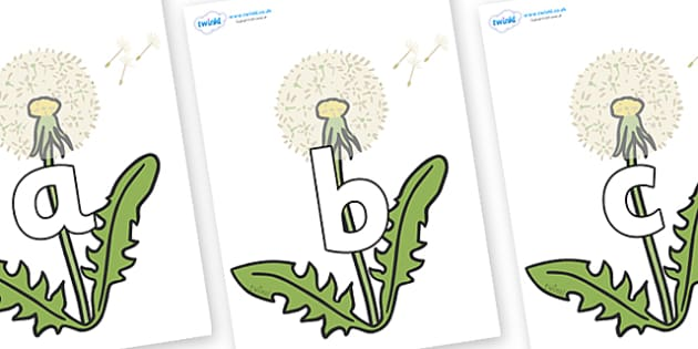 Phoneme Set on Dandelion-Seeds - Phoneme set, phonemes, phoneme, Letters and Sounds, DfES, display, Phase 1, Phase 2, Phase 3, Phase 5, Foundation, Literacy