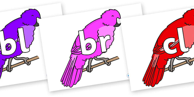 Initial Letter Blends on Parakeets - Initial Letters, initial letter, letter blend, letter blends, consonant, consonants, digraph, trigraph, literacy, alphabet, letters, foundation stage literacy