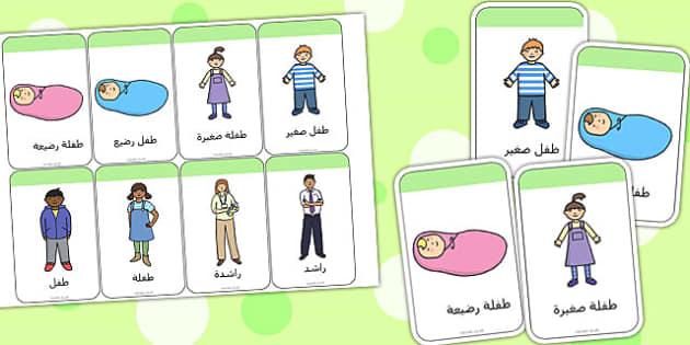 بطاقات تعليمية عن مراحل النمو - مراحل انمو، نمو الإنسان