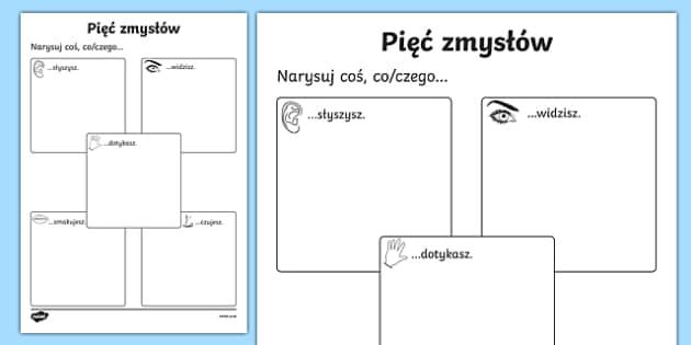 The Five Senses Drawing Activity Sheet Polish-Polish, worksheet