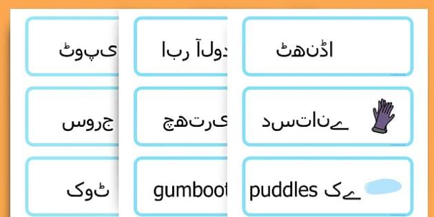 Winter Word Cards - seasons, weather, key words, visual aids  - Urdu