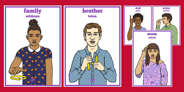 New Zealand Sign Language Family Signs Display Posters Maori Translation - nz, new zealand, sign language, family, signs, display, posters
