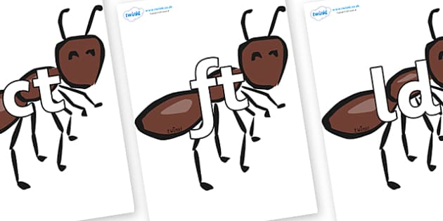 Final Letter Blends on Ants - Final Letters, final letter, letter blend, letter blends, consonant, consonants, digraph, trigraph, literacy, alphabet, letters, foundation stage literacy