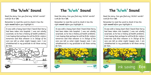 Northern Ireland Linguistic Phonics Stage 5 and 6 Phase 3b, 'h, wh' Sound Activity Sheet - Linguistic Phonics, Phase 3b, Northern Ireland, 'h', 'wh' sound, sound search, text, Worksheet