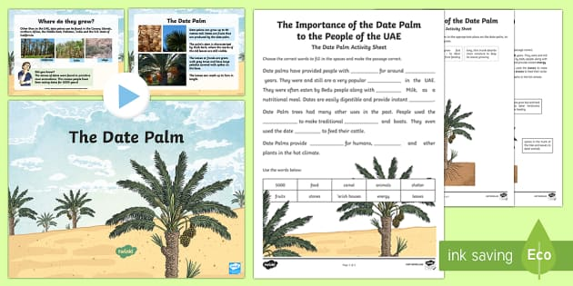The Date Palm PowerPoint and Activity Sheets - Science, Living World, plants, adaptation, date palm, survive, UAE. - Science, Living World, plants, adaptation, date palm, survive, UAE., worksheet, activity sheet - Science, Living World, plants, adapt