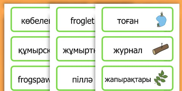 Life Cycle Word Cards - life cycles, lifecycle, visual aid, words - Kazakh