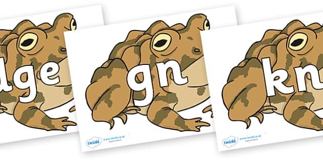 Silent Letters on Toad - Silent Letters, silent letter, letter blend, consonant, consonants, digraph, trigraph, A-Z letters, literacy, alphabet, letters, alternative sounds