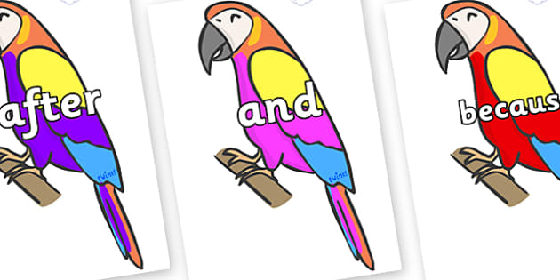 Connectives on Macaws - Connectives, VCOP, connective resources, connectives display words, connective displays