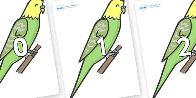 Numbers 0-31 on Budgies - 0-31, foundation stage numeracy, Number recognition, Number flashcards, counting, number frieze, Display numbers, number posters