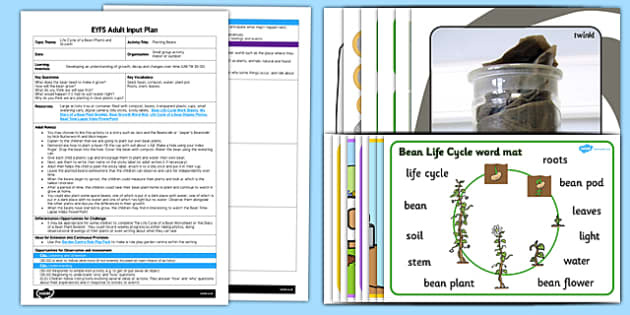 Planting Beans EYFS Adult Input Plan and Resource Pack