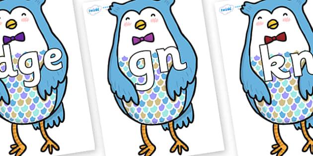 Silent Letters on Owl - Silent Letters, silent letter, letter blend, consonant, consonants, digraph, trigraph, A-Z letters, literacy, alphabet, letters, alternative sounds