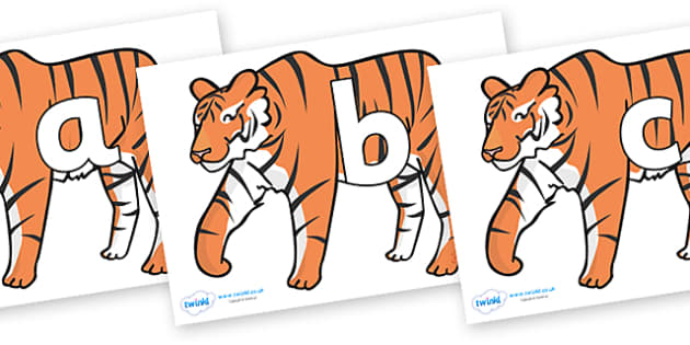 Phoneme Set on Tigers - Phoneme set, phonemes, phoneme, Letters and Sounds, DfES, display, Phase 1, Phase 2, Phase 3, Phase 5, Foundation, Literacy