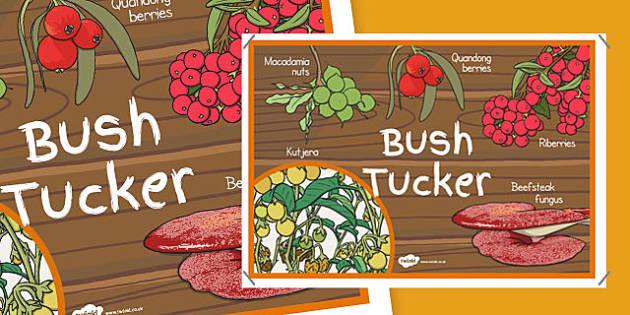 Bush Tucker Display Poster - australia, bush tucker, display poster, display, poster, bush, food