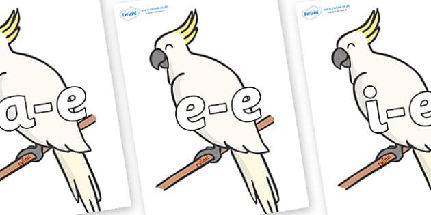 Modifying E Letters on Cockatoos - Modifying E, letters, modify, Phase 5, Phase five, alternative spellings for phonemes, DfES letters and Sounds