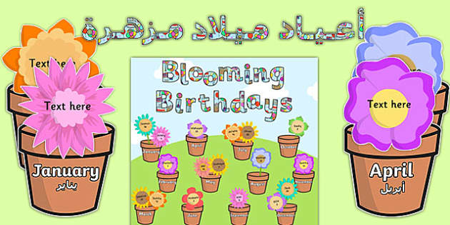 Blooming Birthdays Flower Display Pack Arabic Translation - arabic, birthdays, display, pack