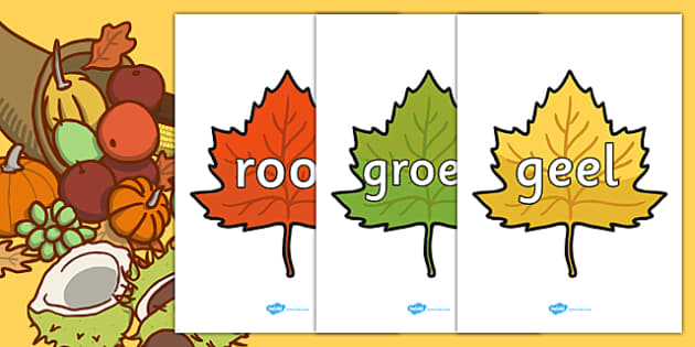 Afrikaans Colour Words on Autumn Leaves - afrikaans, colour