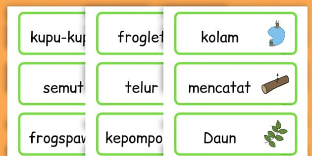 Life Cycle Word Cards - life cycles, lifecycle, visual aid, words - Indonesian