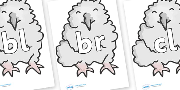 Initial Letter Blends on Baby Owls - Initial Letters, initial letter, letter blend, letter blends, consonant, consonants, digraph, trigraph, literacy, alphabet, letters, foundation stage literacy