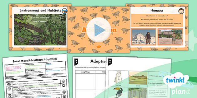 PlanIt - Science Year 6 - Evolution and Inheritance Lesson 2: Adaptation Lesson Pack - planit