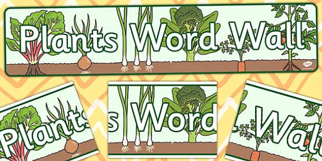 Plants Word Wall Display Banner - plants, word, display, banner