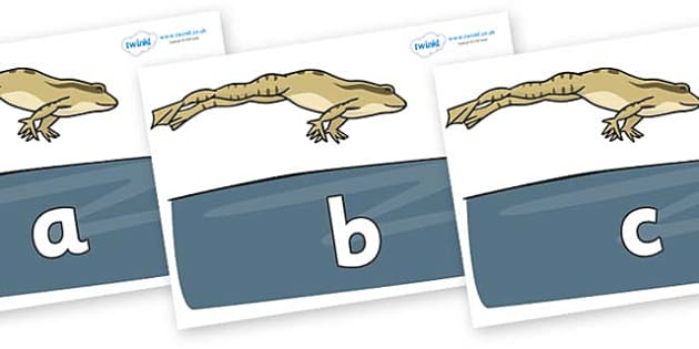 Phase 2 Phonemes on Frog - Phonemes, phoneme, Phase 2, Phase two, Foundation, Literacy, Letters and Sounds, DfES, display