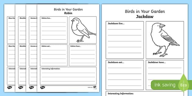 Birds in Your Garden Fact File Activity Sheet, worksheet