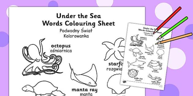Under the Sea Words Colouring Sheet Polish Translation - polish