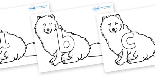 Phoneme Set on Arctic Foxes - Phoneme set, phonemes, phoneme, Letters and Sounds, DfES, display, Phase 1, Phase 2, Phase 3, Phase 5, Foundation, Literacy