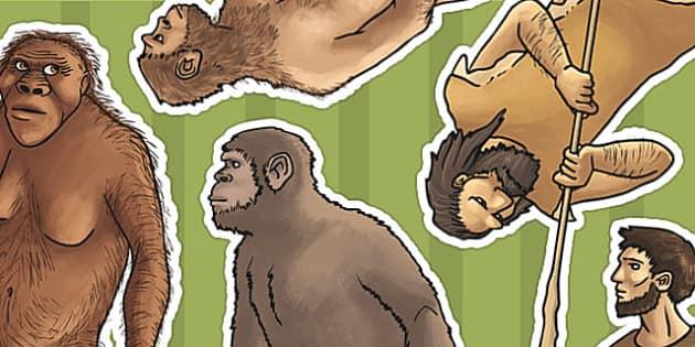Human Evolution Display Cut Outs - human, evolution, display