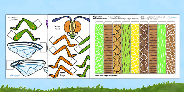 Create Your Own Insect Paper Chain Craft - insects, animal, craft