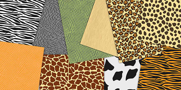 Animal Skin Patterned A4 Sheets - animal, skins, pattern