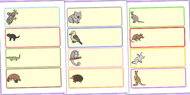 Australian Animal Drawer Peg Name Labels - australia, labels