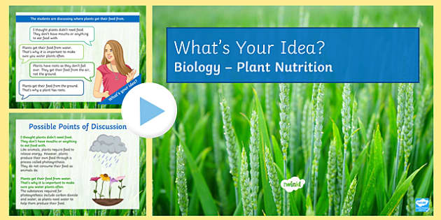 Plant Nutrition What's Your Idea? PowerPoint