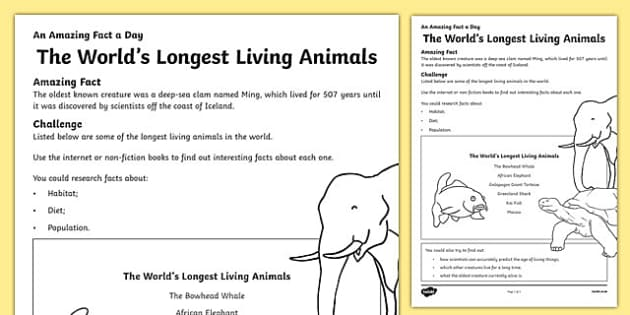 The World's Longest Living Animals Activity Sheet, worksheet