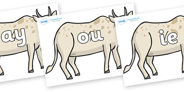 Phase 5 Phonemes on African Ox - Phonemes, phoneme, Phase 5, Phase five, Foundation, Literacy, Letters and Sounds, DfES, display