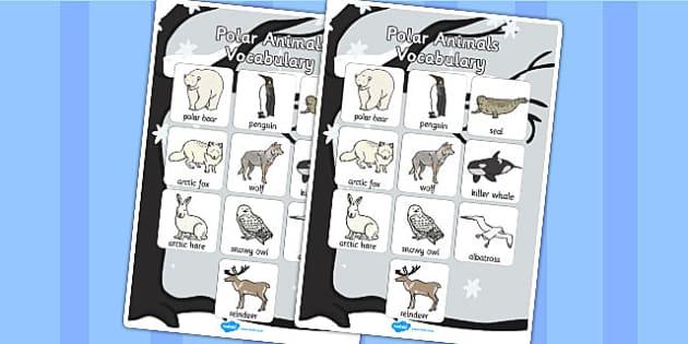 Polar Animals Vocabulary Poster - Polar, Animals, Vocabulary