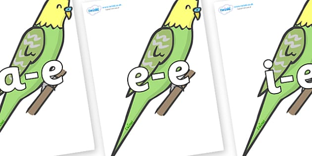 Modifying E Letters on Budgies - Modifying E, letters, modify, Phase 5, Phase five, alternative spellings for phonemes, DfES letters and Sounds