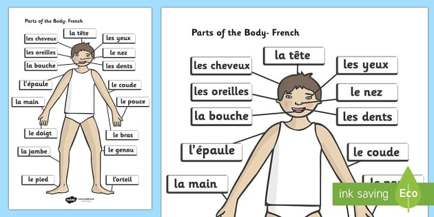 Parts of the Body (French, A4) - parts of the body, French, francais, MFL, Eyes, nose, mouth, back, display, chest, tongue, ourselves, all about me, my body, senses, emotions, family, body, growth