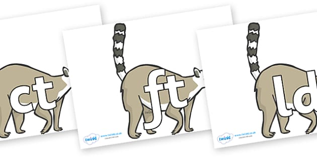 Final Letter Blends on Raccoons - Final Letters, final letter, letter blend, letter blends, consonant, consonants, digraph, trigraph, literacy, alphabet, letters, foundation stage literacy