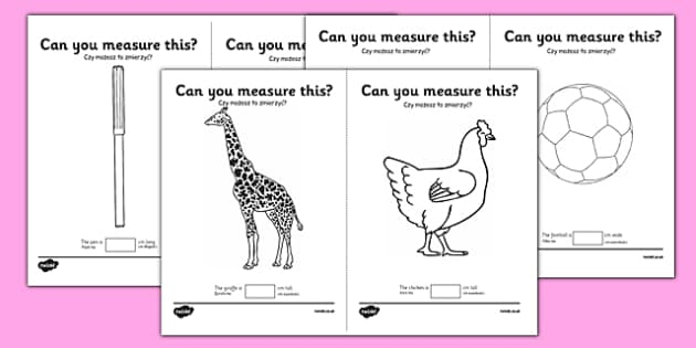 Measuring in cm Activity Sheets Polish Translation - centimetre, centimetres, measure, measurement, ssm, length, ruler, polish, poland, eal, maths, worksheet