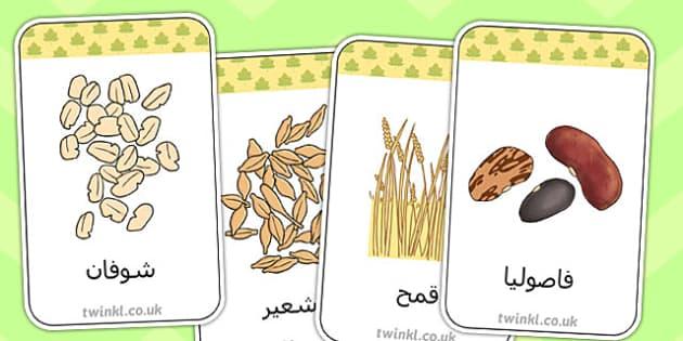 بطاقات فلاش عن الحصاد - الحصاد، المحصول