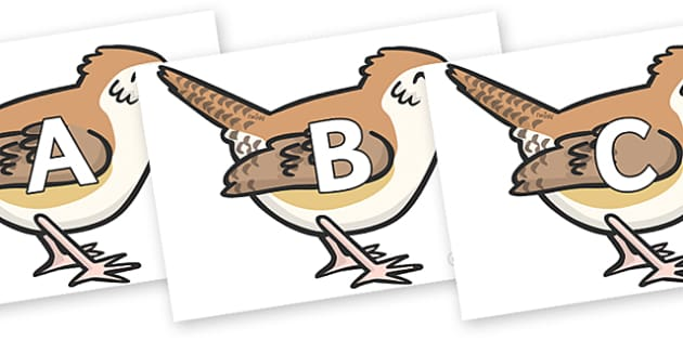 A-Z Alphabet on Wrens - A-Z, A4, display, Alphabet frieze, Display letters, Letter posters, A-Z letters, Alphabet flashcards