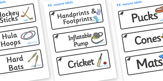 Raven Themed Editable PE Resource Labels - Themed PE label, PE equipment, PE, physical education, PE cupboard, PE, physical development, quoits, cones, bats, balls, Resource Label, Editable Labels, KS1 Labels, Foundation Labels, Foundation Stage Labe
