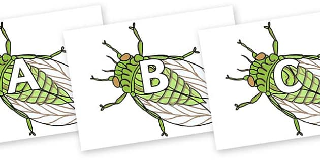 A-Z Alphabet on Cicada - A-Z, A4, display, Alphabet frieze, Display letters, Letter posters, A-Z letters, Alphabet flashcards