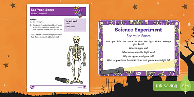 EYFS See Your Bones Science Experiment and Prompt Card Pack