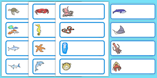 Editable Drawer - Peg - Name Labels (Sea Creatures) - Under the Sea - Sea creature Label Templates, under the sea,, Name Labels, Editable Labels, Drawer Labels, Coat Peg Labels, Peg Label, KS1 Labels, Foundation Labels, Foundation Stage Labels, Teach