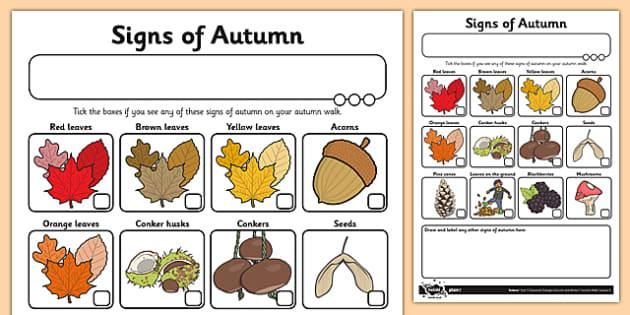 Signs of Autumn Checklist - autumn, autumn walk, signs of autumn, walk, signs, science